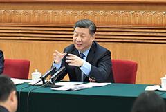 习近平参加福建代表团审议
