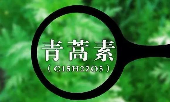 """屠呦呦团队新突破 攻坚""""青蒿素抗药性""""难题"""