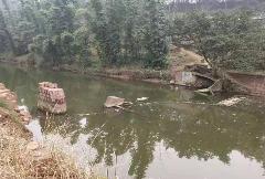 网友反映自贡荣县河桥被洪水冲垮!河口镇政府回应:力争12月底前建成通行